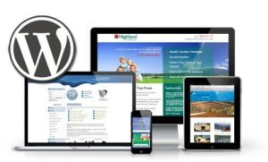 wordpress web development1 e1477298018658