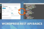 WordPress REST API Temelleri